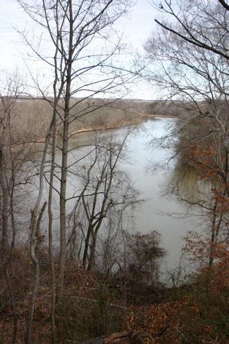 Anacostia River from National Arboretum